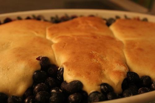 Blueberry Cobbler FOODOGENIC